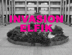 Invasion elfik